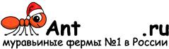Муравьиные фермы AntFarms.ru - Тула